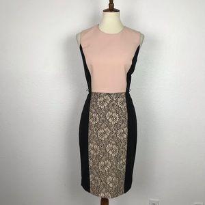 Calvin Klein Color Block Lace Sheath Dress